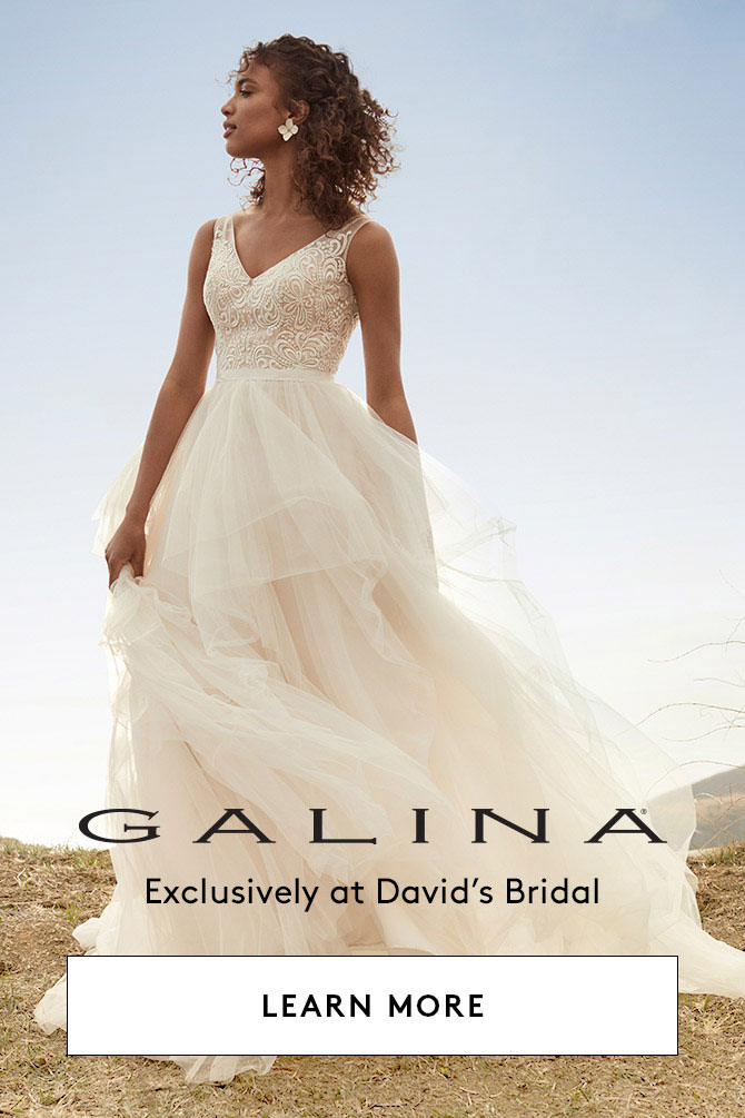 c7a9f7f12f Galina Wedding Dresses & Bridal Gowns 2018 | David's Bridal