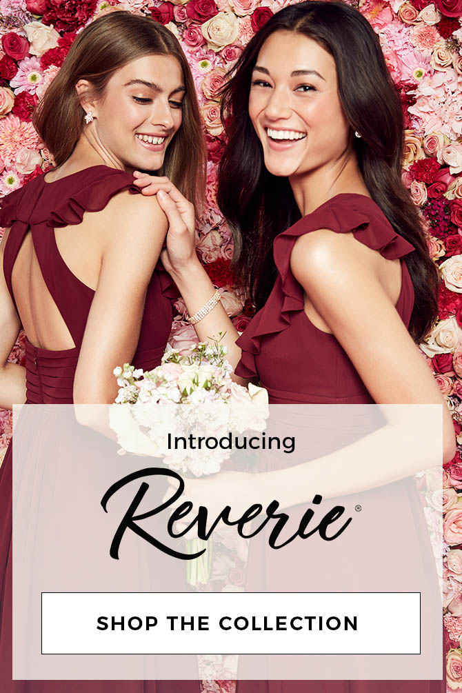 Introducing Reverie