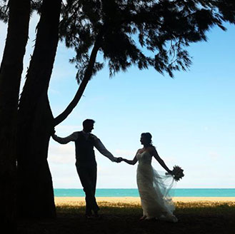 Silhouette of the newlyweds holding hands by the tree on the beach