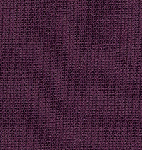 Plum Color Swatch