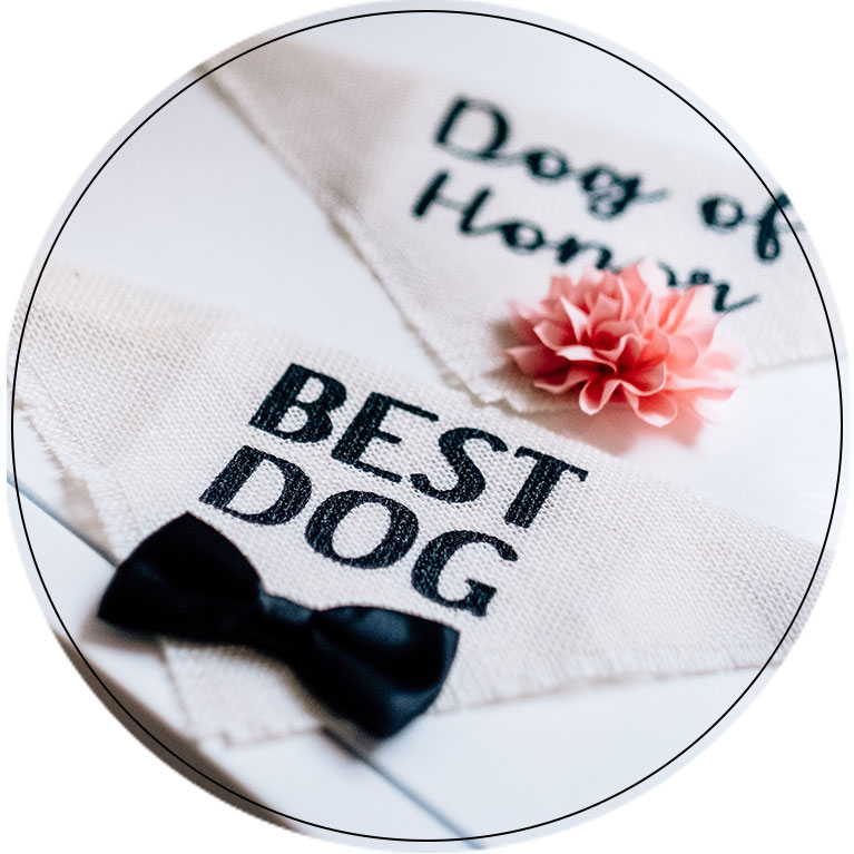 Dog handkerchiefs that say Best Dog with a bowtie and Dog of Honor with a pink flower