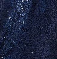 Navy Sequin Color Swatch