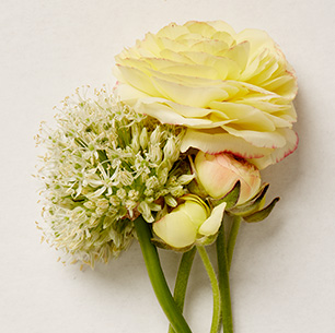 Wedding bridesmaid bouquet flower ideas davids bridal large floral blooms including queen annes lace junglespirit Gallery